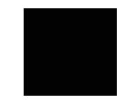 Logo Naish and son